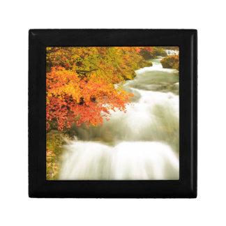 秋のSoteska Vintgarの峡谷 ギフトボックス
