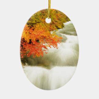 秋のSoteska Vintgarの峡谷 セラミックオーナメント