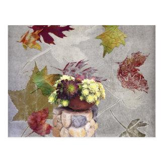 秋のSucculents ポストカード