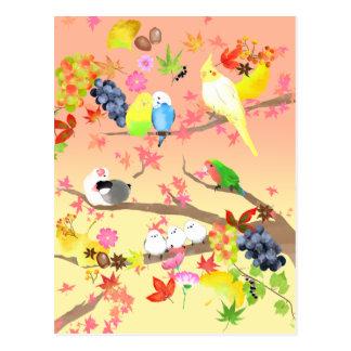 秋を楽しむ鳥達 ポストカード