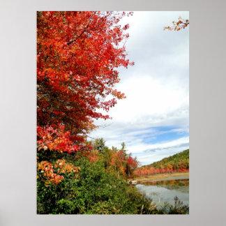 秋季の写真ポスターのニューイングランドのかえで ポスター