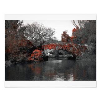 秋橋セントラル・パーク フォトプリント