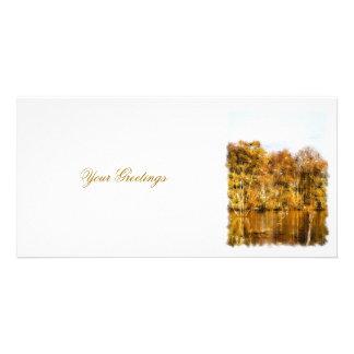 秋湖 カード