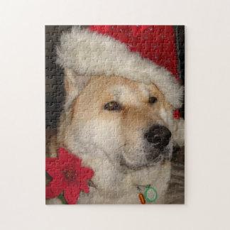 秋田かわいい犬の赤いサンタの帽子のpointsettiaのクリスマス ジグソーパズル