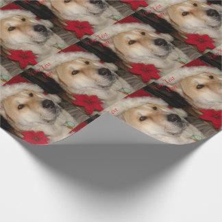 秋田かわいい犬の赤いサンタの帽子のpointsettiaのクリスマス ラッピングペーパー