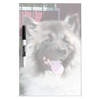 秋田犬 ホワイトボード