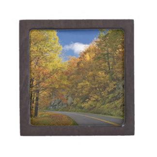 秋色によって曲がるリッジの青いパークウェイ ギフトボックス