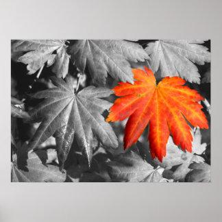 秋色のファインアートのプリント プリント
