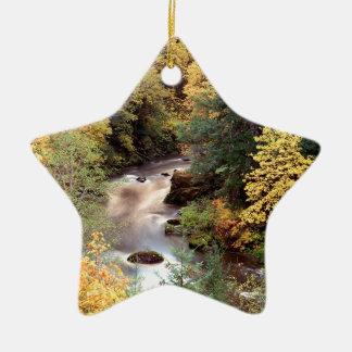 秋色のCoquilleの川オレゴン 陶器製星型オーナメント