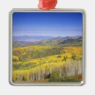 秋色のRouttの国有林、の近くで メタルオーナメント