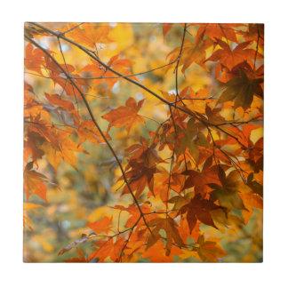 秋色はセラミックタイルを茶色にします タイル