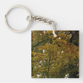 秋色 キーホルダー