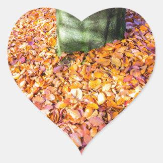 秋許可で覆われる木の幹のまわりの地面 ハートシール