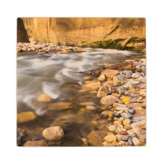 秋4の新しい川の狭いところ ウッドコースター