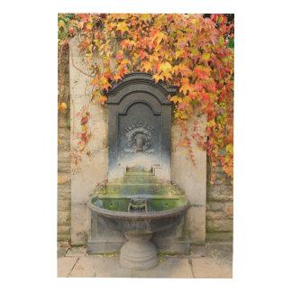 秋、ハンガリーの水飲み場 ウッドウォールアート