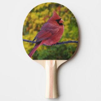 秋、Cardinalisのオスの北の(鳥)ショウジョウコウカンチョウ 卓球ラケット