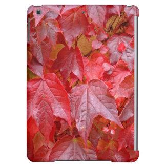 秋(Herbstblätter)の色