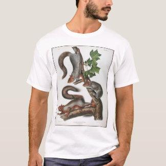 移住性のリス Tシャツ
