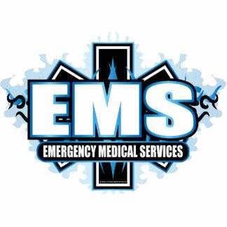 種族EMS 写真彫刻(台付き)