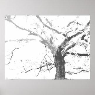 稲妻の木 ポスター