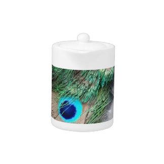 穀物のムギの緑の孔雀の目