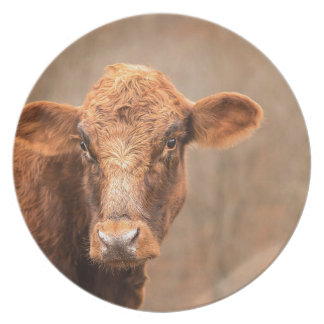穀物の時間牛 プレート