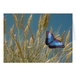 穀物の(昆虫)オオカバマダラ、モナークの青い蝶 カード