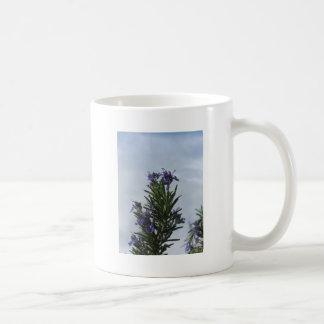 空に対する花が付いているローズマリーの植物 コーヒーマグカップ