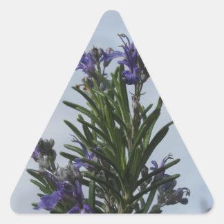 空に対する花が付いているローズマリーの植物 三角形シール