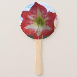 空に対する赤く及び白いアマリリスの花 ハンドファン