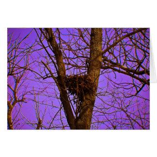 空の巣のメッセージカード カード