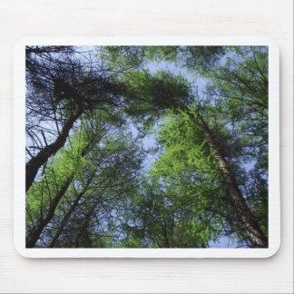 空の木 マウスパッド