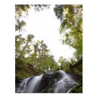 空の眺めの滝の低い角度眺め ポストカード