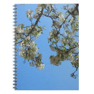 空の花 ノートブック