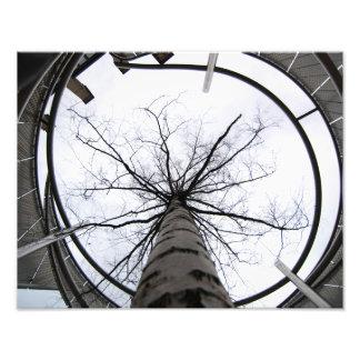 空の限界の写真の芸術 フォトプリント