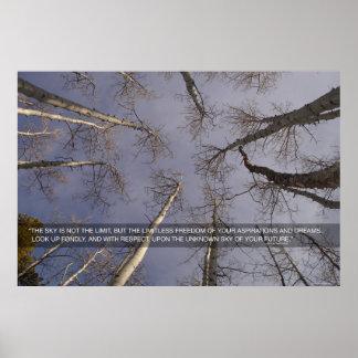 空は限界…ではないです ポスター