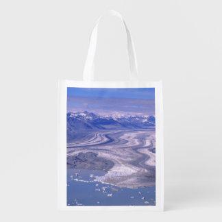 空中写真のローエルの氷河、Kluaneの国民 エコバッグ