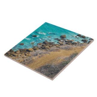 空中写真の太平洋の海岸線プエルトローペッツ タイル