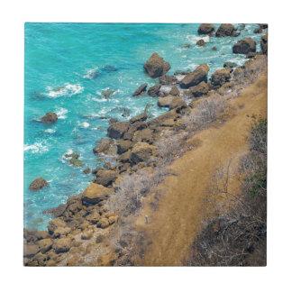 空中写真の太平洋の海岸線プエルトローペッツE タイル