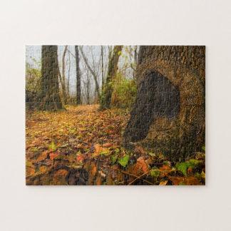 空気のような森、森林床の見通しのプリント ジグソーパズル