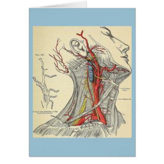 空白のでカスタマイズ可能なヴィンテージの解剖学のイラストレーション カード