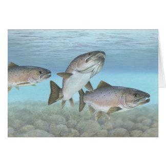 空白のなカードを絵を描いている大西洋サケ カード