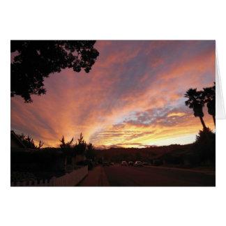 空白のな挨拶状: 木によって組み立てられる明るい日没 カード