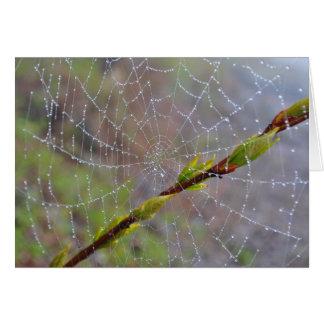空白のな挨拶状- Dewyくもの巣 カード