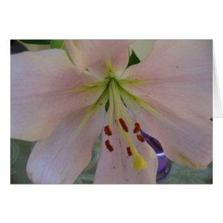 空白のな花Notecard カード