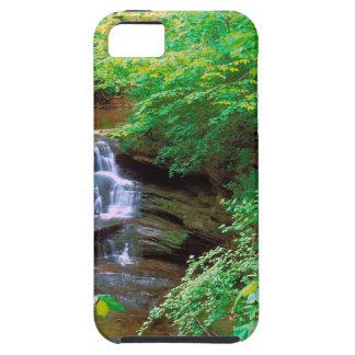 空腹の石の州立公園イリノイの滝 iPhone SE/5/5s ケース