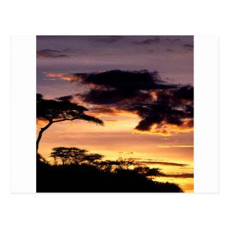 空開始のタンザニアアフリカ ポストカード