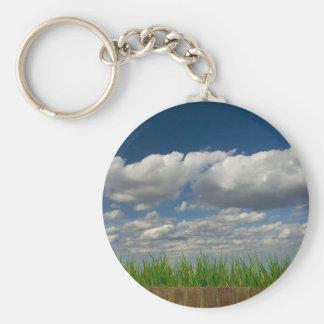空、草、煉瓦 キーホルダー