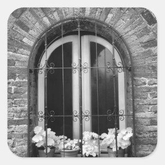 窓および植木鉢の黒く及び白い眺め スクエアシール