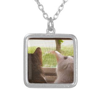 窓から熟視している2匹のBFF猫 シルバープレートネックレス